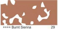 Burnt Sienna 29