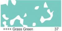 Grass Green 37