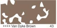 Van Dyke Brown 43
