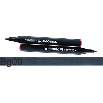 Pisak typu marker, dwie końcówki, szeroka i precyzyjna